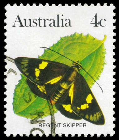 AUSTRALIA - CIRCA 1983: A Stamp printed in AUSTRALIA shows the Regent Skipper (Euschemon rafflesia), series, circa 1983