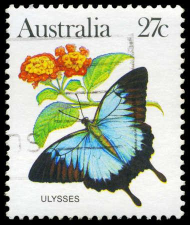 AUSTRALIA - CIRCA 1983: A Stamp printed in AUSTRALIA shows the Ulysses (Papilio ulysses), series, circa 1983