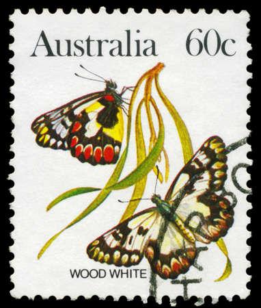 AUSTRALIA - CIRCA 1983: A Stamp printed in AUSTRALIA shows the Wood White (Leptidea sinapis), series, circa 1983