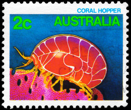 subsea: AUSTRALIA - CIRCA 1984: A Stamp printed in AUSTRALIA shows the Coral Hopper, series, circa 1984
