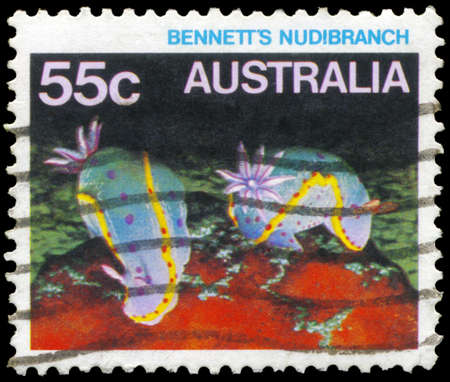 subsea: AUSTRALIA - CIRCA 1984: A Stamp printed in AUSTRALIA shows the Bennett's Nudibranch, series, circa 1984