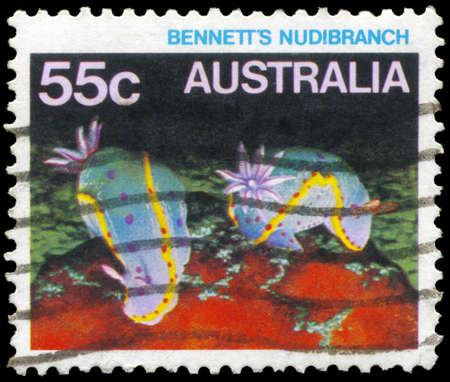 subaquatic: AUSTRALIA - CIRCA 1984: A Stamp printed in AUSTRALIA shows the Bennett's Nudibranch, series, circa 1984