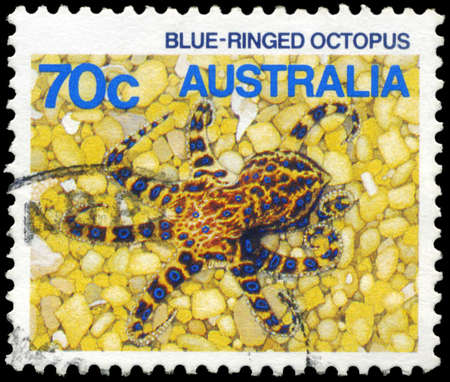 subsea: AUSTRALIA - CIRCA 1984: A Stamp printed in AUSTRALIA shows the Blue-ringed Octopus, series, circa 1984