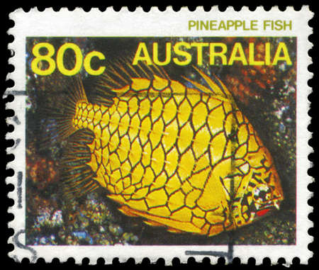 subsea: AUSTRALIA - CIRCA 1984: A Stamp printed in AUSTRALIA shows the Pineapplefish, series, circa 1984