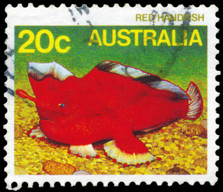 subaquatic: AUSTRALIA - CIRCA 1984: A Stamp printed in AUSTRALIA shows the Red Handfish, series, circa 1984