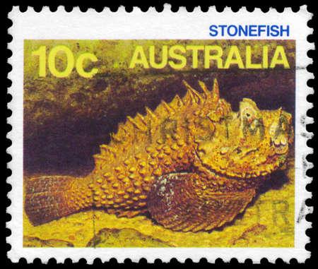 stonefish: AUSTRALIA - CIRCA 1984: A Stamp printed in AUSTRALIA shows the Stonefish, series, circa 1984 Editorial