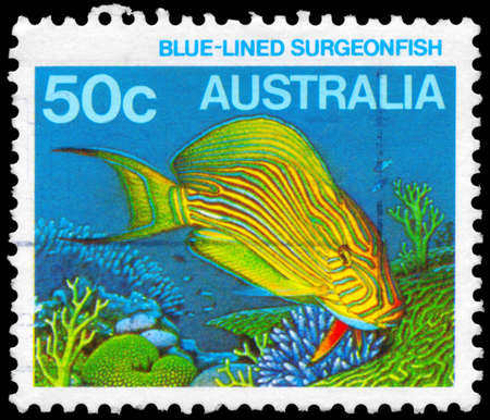 subsea: AUSTRALIA - CIRCA 1984: A Stamp printed in AUSTRALIA shows the Blue-lined Surgeonfish, series, circa 1984