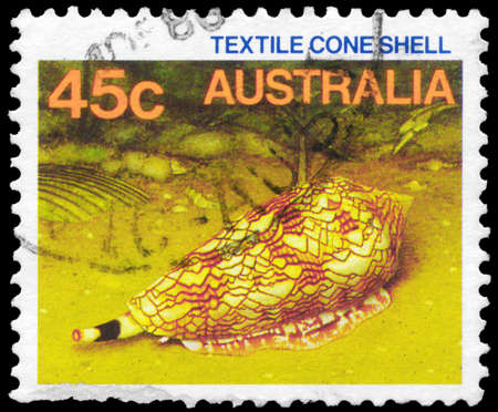 cone shell: AUSTRALIA - CIRCA 1984: A Stamp printed in AUSTRALIA shows the Textile Cone Shell, series, circa 1984 Editorial