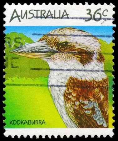 AUSTRALIA - CIRCA 1986: A Stamp printed in AUSTRALIA shows the Kookaburra, Wildlife series, circa 1986 Stock Photo - 16376050