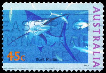 AUSTRALIA - CIRCA 1995: A Stamp printed in AUSTRALIA shows the Black Marlin, The World Down Under series, circa 1995