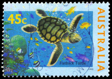 subsea: AUSTRALIA - CIRCA 1995: A Stamp printed in AUSTRALIA shows the Flatback Turtle, The World Down Under series, circa 1995