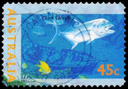 AUSTRALIA - CIRCA 1995: A Stamp printed in AUSTRALIA shows the Giant Trevally, The World Down Under series, circa 1995