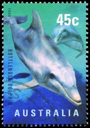 subsea: AUSTRALIA - CIRCA 1998: A Stamp printed in AUSTRALIA shows the Bottlenose Dolphin, Marine Life series, circa 1998 Editorial