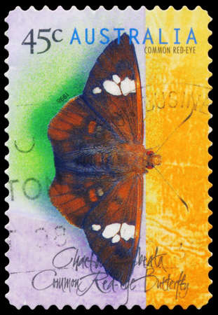 redeye: AUSTRALIA - CIRCA 1998: A Stamp printed in AUSTRALIA shows the Common Redeye (Matapa Aria), Butterflies series, circa 1998