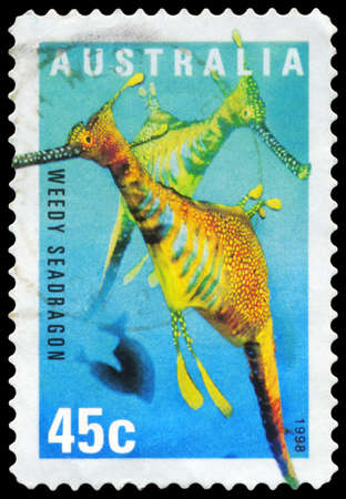 subsea: AUSTRALIA - CIRCA 1998: A Stamp printed in AUSTRALIA shows the Weedy Seadragon, series, circa 1998 Editorial