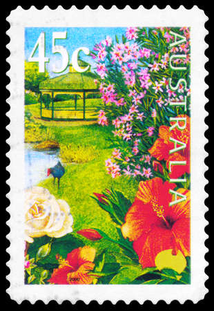 purple swamphen: AUSTRALIA - CIRCA 2000: A Stamp printed in AUSTRALIA shows the Hibiscus, Pond, Rose, Nerium Oleander, Purple Swamphen, Gardens series, circa 2000 Editorial