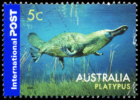 AUSTRALIA - CIRCA 2006: A Stamp printed in AUSTRALIA shows the Platypus, Animals series, circa 2006 Editorial