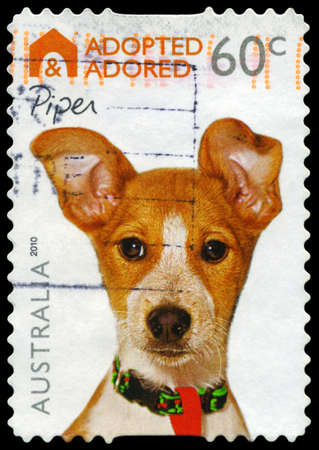 adopted: AUSTRALIA - CIRCA 2010: A Stamp printed in AUSTRALIA shows the Dog Piper, Adopted and Adored series, circa 2010 Editorial