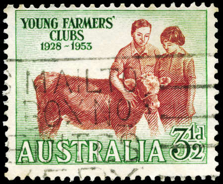 AUSTRALIA - CIRCA 1953: A Stamp printed in AUSTRALIA shows the Boy and Girl with Calf, Young Farmers' Clubs, 25th anniversary, circa 1953 Stock Photo - 16652250