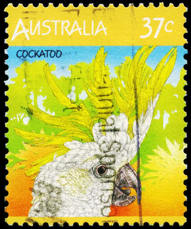 AUSTRALIA - CIRCA 1987: A Stamp printed in AUSTRALIA shows the Cockatoo, Fauna series, circa 1987 Stock Photo - 16652259