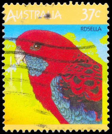 AUSTRALIA - CIRCA 1987: Un sello impreso en AUSTRALIA muestra el Rosella, la serie Fauna, alrededor de 1987