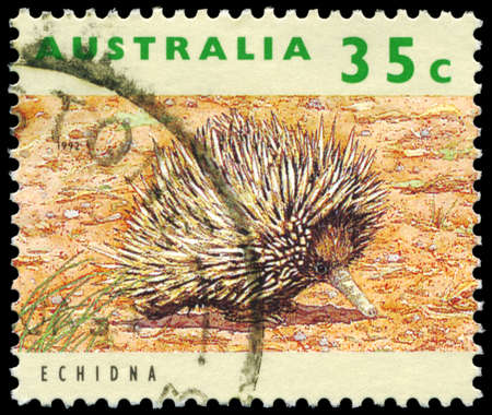 threatened: AUSTRALIA - CIRCA 1992: A Stamp printed in AUSTRALIA shows the Echidna, Threatened Species series, circa 1992 Editorial