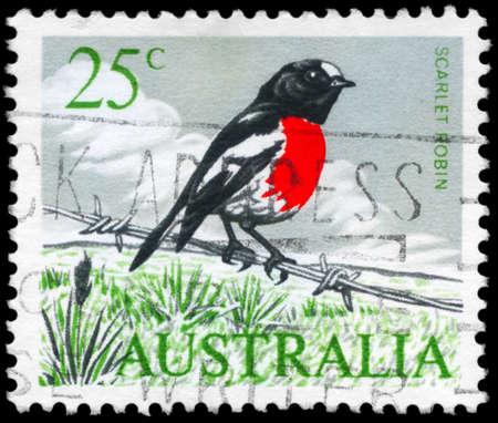 barblock: AUSTRALIA - CIRCA 1965: A Stamp printed in AUSTRALIA shows the Scarlet Robin, Birds series, circa 1965