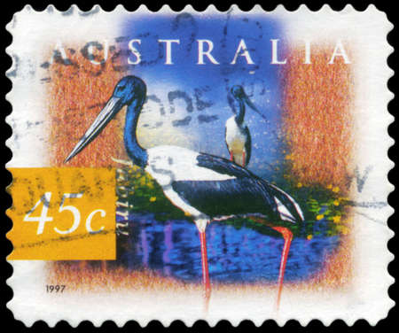 AUSTRALIA - CIRCA 1997: A Stamp printed in AUSTRALIA shows the Black Necked Stork (Jabiru), Fauna and Flora, series, circa 1997 Stock Photo - 18723834