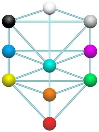 tree diagram: Schema dell'albero della vita Vettoriali