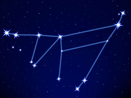 Capricornus constellation on the starry sky Stock Vector - 29230912