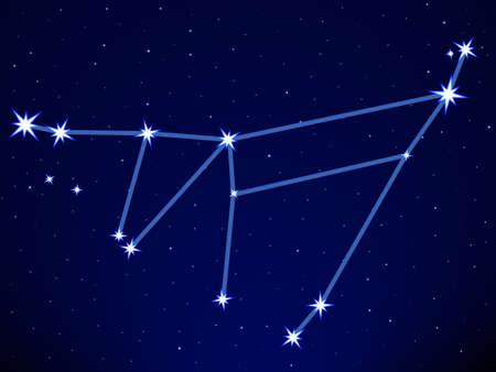 capricornus: Capricornus constellation on the starry sky