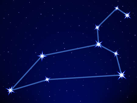 Leo constellation on the starry sky Stock Vector - 29231148