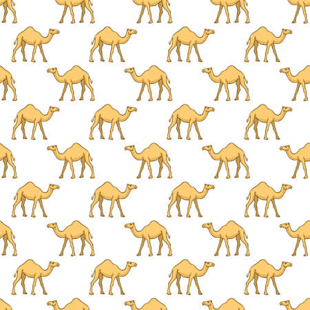 humped: Seamless pattern of the cartoon camels  Illustration