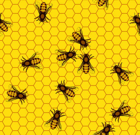 apiculture: Seamless pattern of the bee on honeycombs background