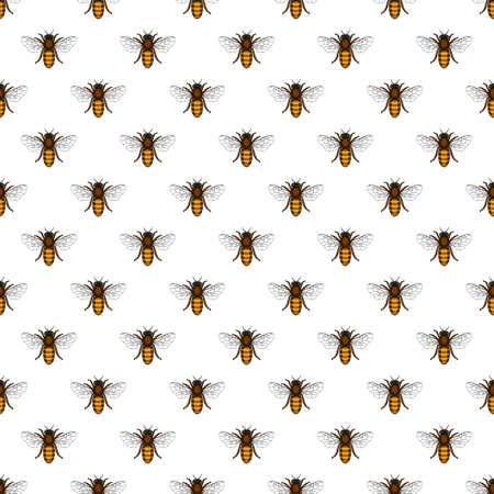 Seamless pattern of the bee insects 일러스트
