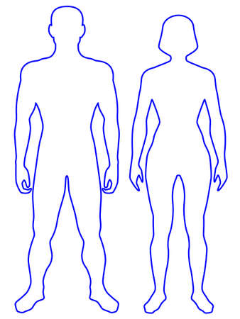Illustration of the contour human body. Man and woman Vettoriali