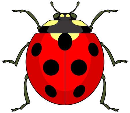 hexapod: Illustration of the ladybug icon Illustration