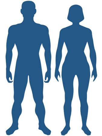ser humano: Ilustración del cuerpo humano silueta. El hombre y la mujer Vectores