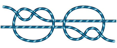 commissure: Illustration of the connecting knot Illustration