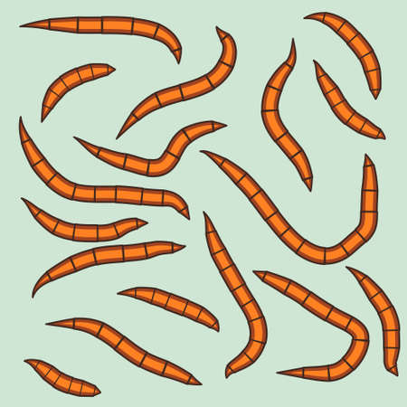 vermiculture: Illustration of the worm group Illustration
