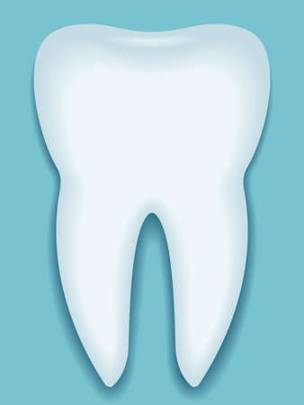 alveolar: Illustration of the tooth icon