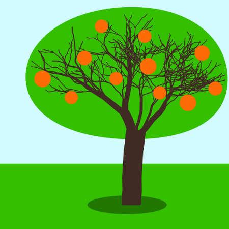 fertile: Illustration of the fruit tree