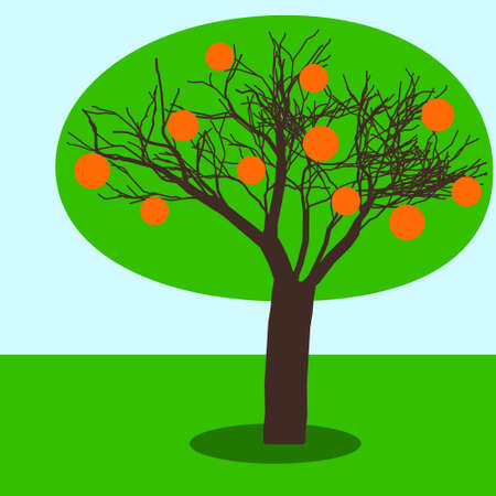 fruitage: Illustration of the fruit tree