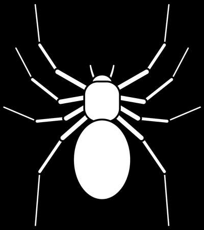 asterix: Illustration of the white spider on black Illustration