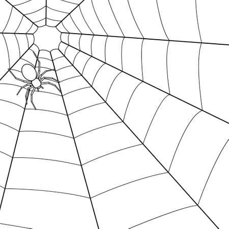 Illustratie van de spin op spinneweb