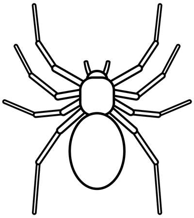 asterix: Illustration of the spider on white