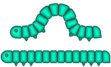 cartoon larva: Illustration of the caterpillar larva insect icon Illustration