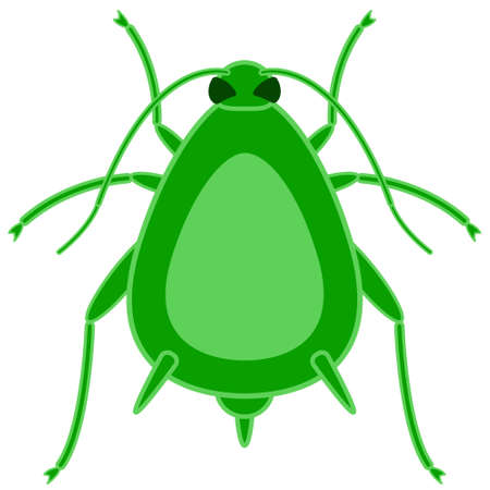 louse: Illustration of the greenfly insect icon