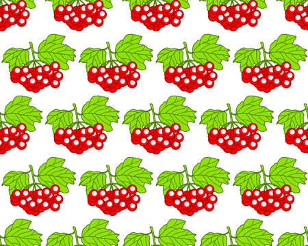 guelder rose: Seamless pattern of the arrowwood fruits and leaves