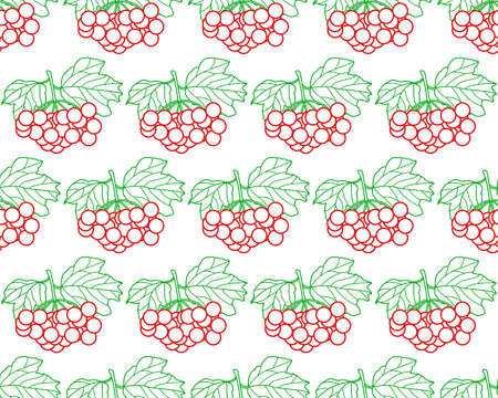 guelder rose: Seamless pattern of the contour arrowwood fruits and leaves Illustration